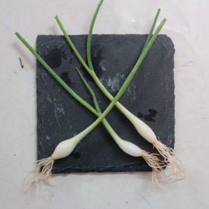 mini verduras en Las Palmas